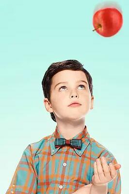 少年谢尔顿第二季