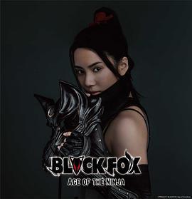 黑狐:忍者时代